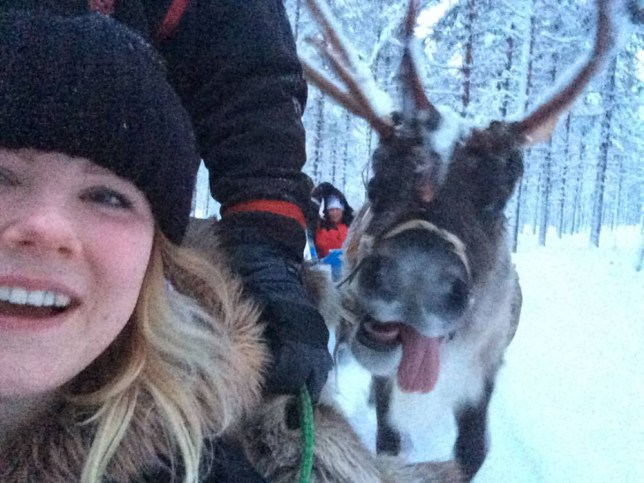 PIC FROM TILLY TASKER / CATERS NEWS - (PICTURED: Tilly with the reindeer.) This RUDE-olph the bare-faced reindeer stuck his tongue out in a very festive photobomb. Despite pulling a sled - not Santas unfortunately - this cheeky deer still had time to poke its not-so-red nose into Tilly Tuckers selfie. But, with his snow-sprinkled antlers and pink tongue lolling out of the side its mouth, it is impossible to be anything but amused. Tilly, from London, was being pulled through a frozen Lapland forest in a different sleigh when she decided to take a quick snap. - SEE CATERS COPY