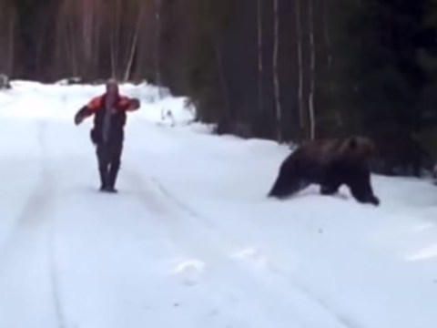 Here's how to properly thwart a bear attack (you know, just in case)