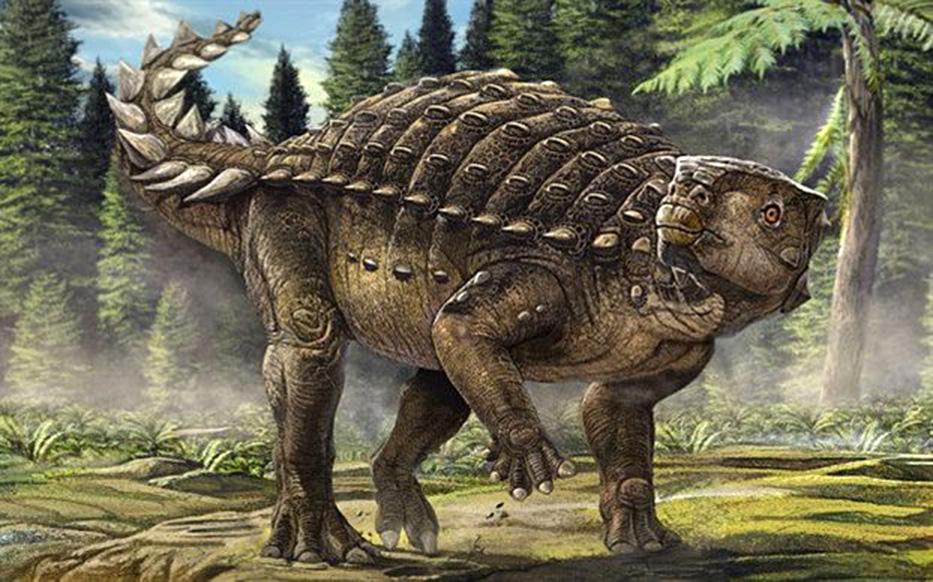 Kunbarrasaurus Credit: University of Queensland
