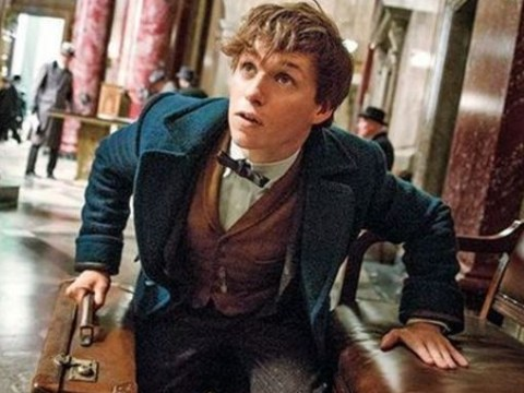 JK Rowling confirms Fantastic Beasts And Where To Find Them will be a film trilogy