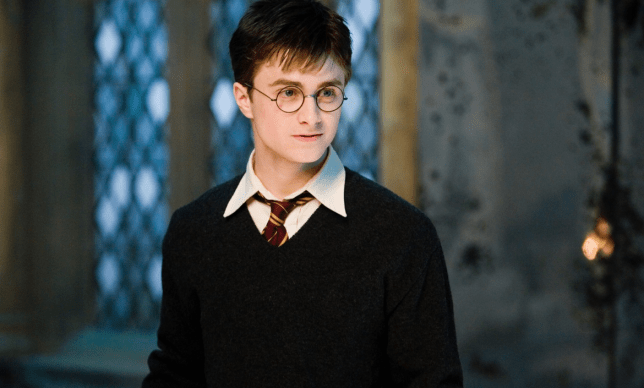 This theory about the death of a Harry Potter's Hedwig seems