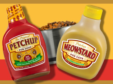 You can now buy condiments for your pet's food