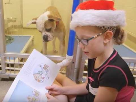 This video of children reading books to dogs is pretty cute