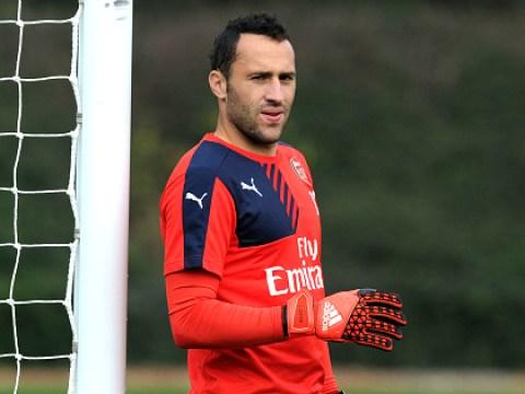 Besiktas confirm transfer interest in Arsenal goalkeeper David Ospina