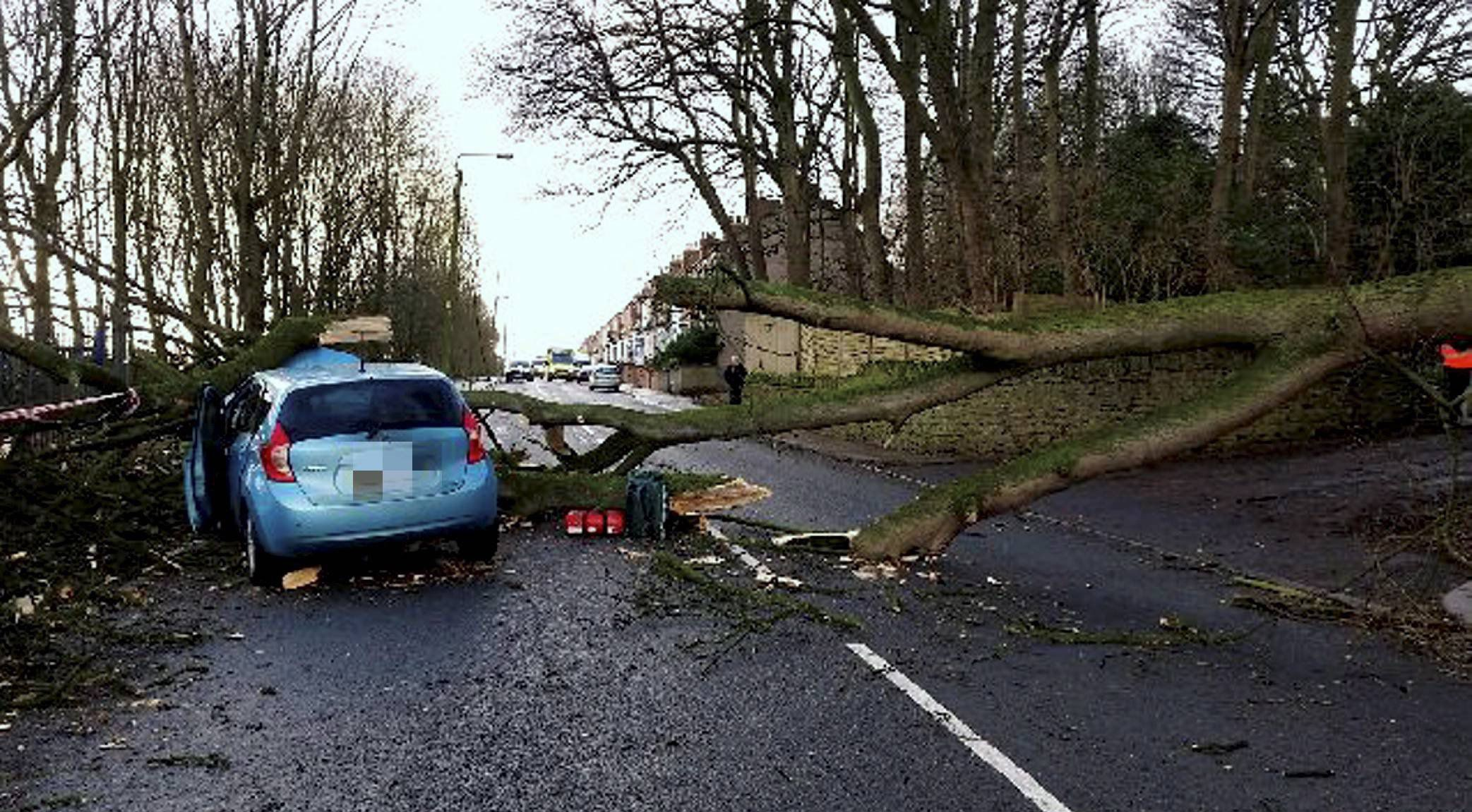 Dated: 31/01/2016 The scene of destruction after a tree fell onto a vehicle in Ferryhill Station, County Durham on Friday, trapping Susan McKay and Terrilee Hope inside as members of the public took pictures of them until they were rescued by firefighters, after Storm Gertrude wreaked havoc across the north. See story by North News