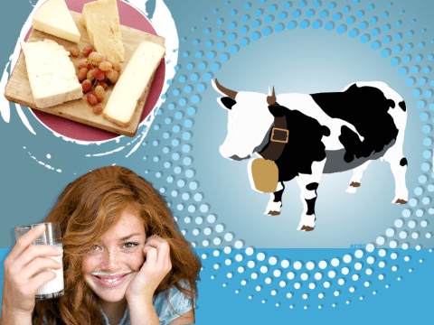 5 reasons why dairy products may actually be good for you
