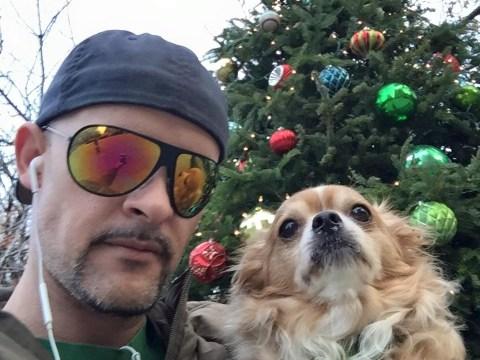 Man 'stabbed gay porn star boyfriend's pet dog to death in park'