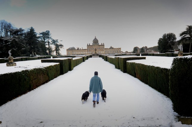 A woman walks her dogs in the snow at Castle Howard, North Yorkshire, February 15 2016