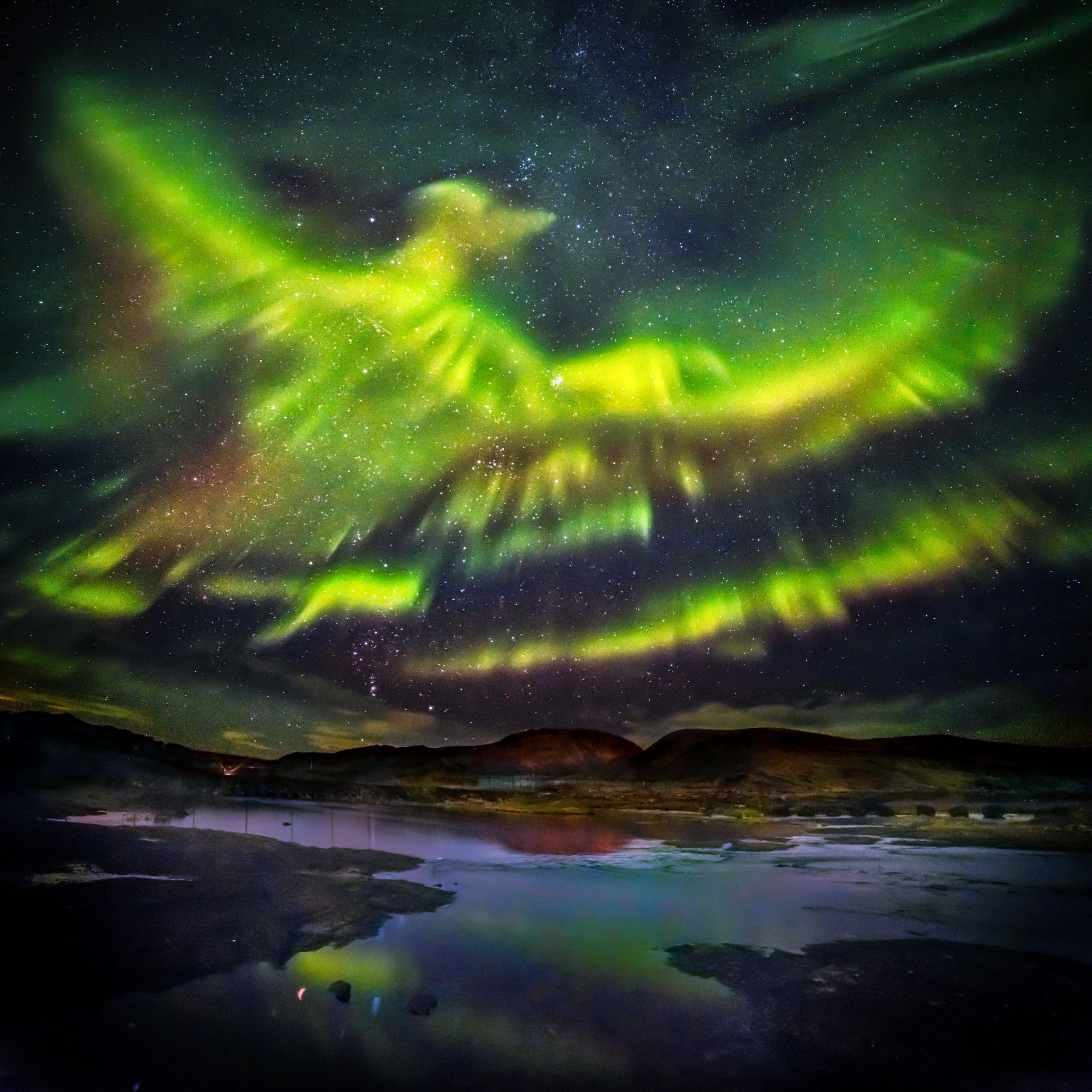 PIC BY HALLGRIMUR P. HELGASON/ CATERS NEWS - (PICTURED: the aurora borealis in the shape of a huge phoenix) - These dramatic images of the aurora borealis have captured what appears to be a huge PHOENIX rising from the ground and flying over Iceland. With outstretched wings and a striking profile the mythical creature, captured by photographer Hallgrimur P. Helgason, wowed stargazers in Kaldrsel. Hallgrimur, 64, said that the bird showed up in the night sky an hour after he got there and started snapping. He said: Its really a thrill shooting the aurora, especially when they are so playful like they were that night. SEE CATERS COPY.