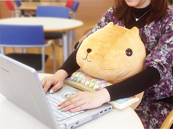cute cushions support your wrists while you work
