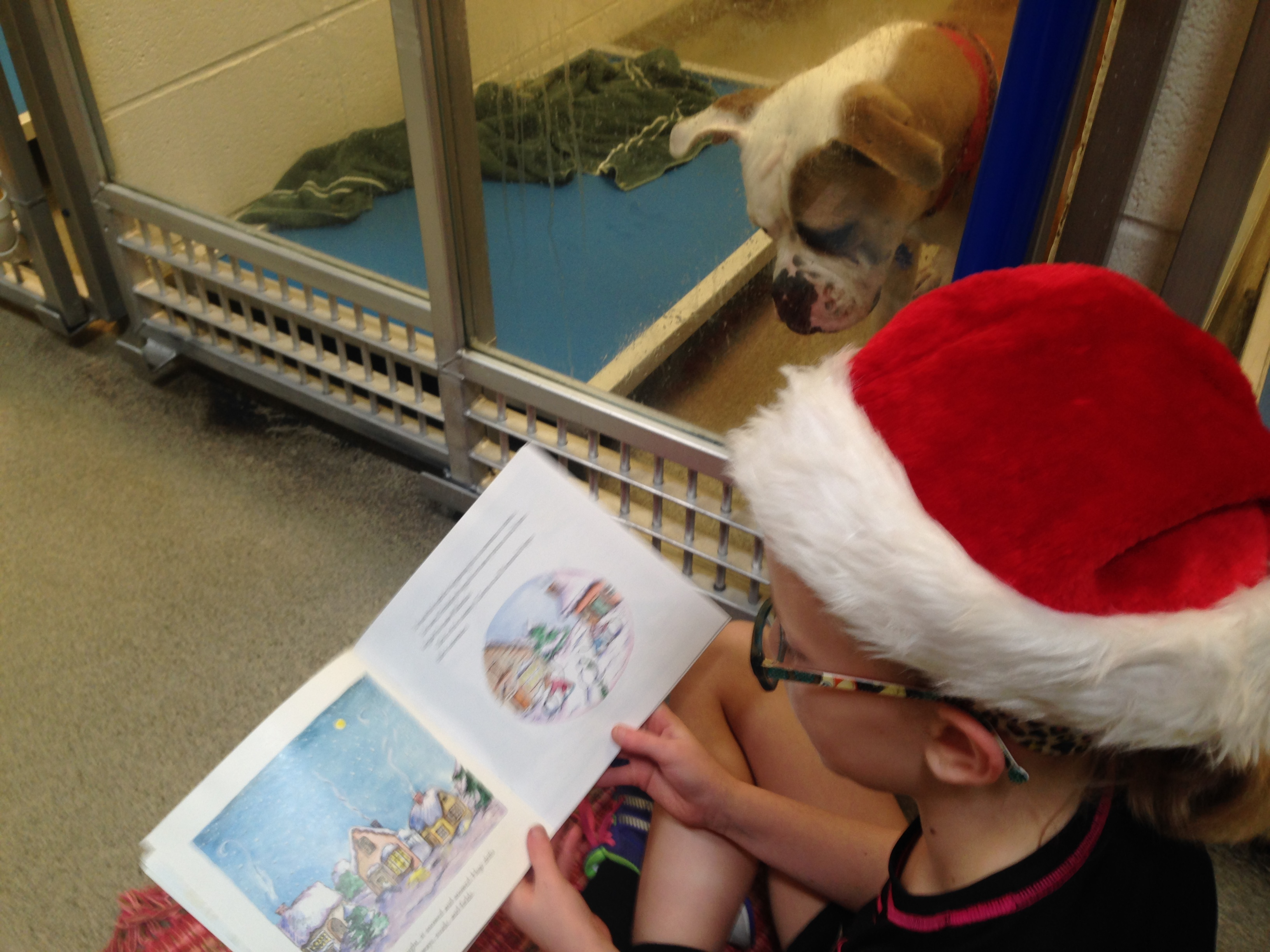 Children read to shelter dogs in 'shelter buddies' progra Credit: Humane Society of Missouri