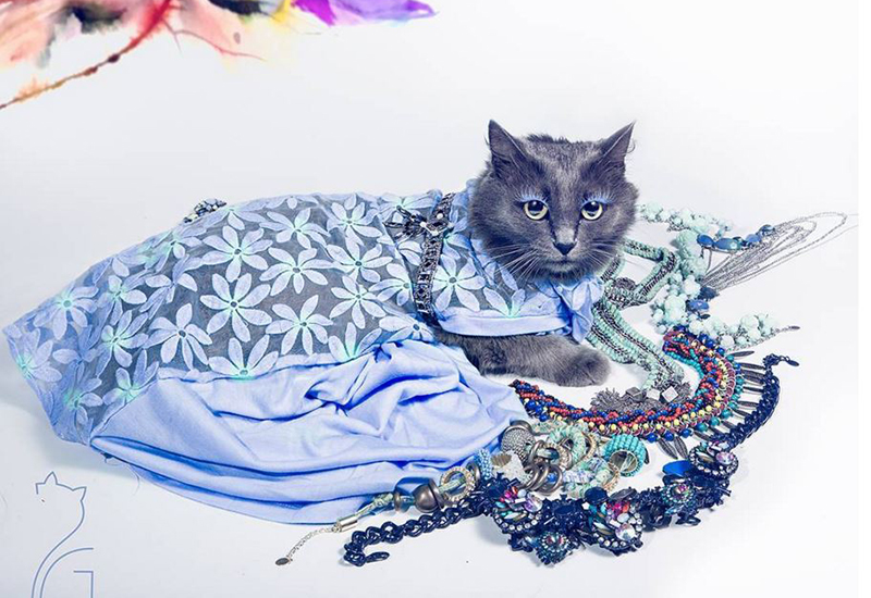 Pitzush Puss In Glam