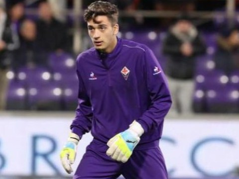 Arsenal eye transfer of Fiorentina goalkeeper Giacamo Satalino
