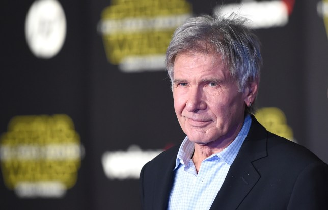 Harrison Ford broke his leg in the on-set accident (Picture: Getty Images)