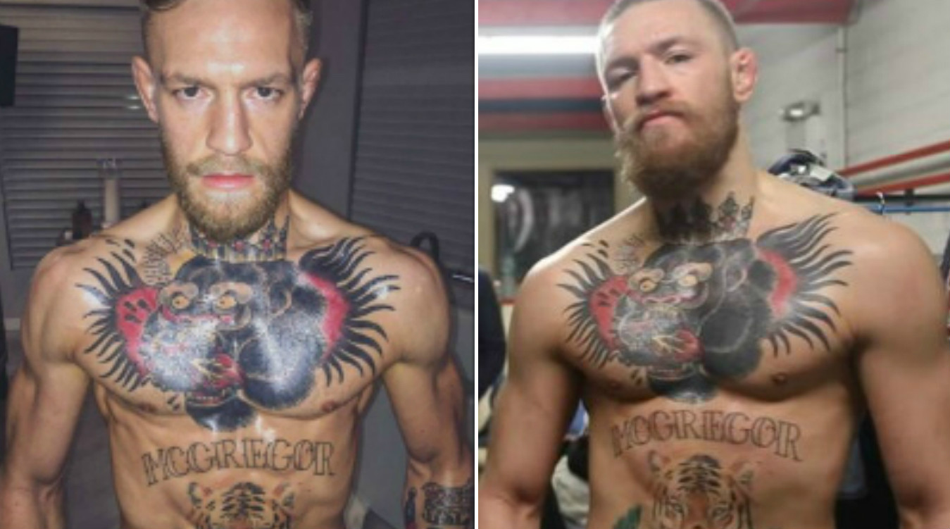 Conor McGregor looks an absolute beast after jumping two weight classes for Nate Diaz fight at UFC 196