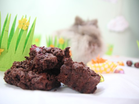 Vegan recipes: Easter-themed cakes and desserts to prepare this season