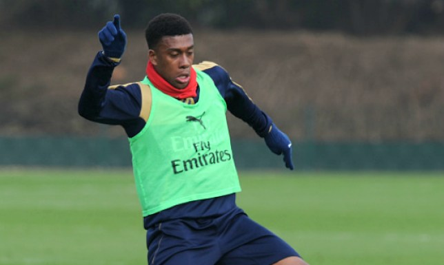 ST ALBANS, ENGLAND - MARCH 12: of Arsenal during a training session at London Colney on March 12, 2016 in St Albans, England. (Photo by Stuart MacFarlane/Arsenal FC via Getty Images)