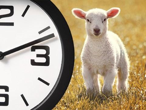 So when exactly do the clocks go forward?