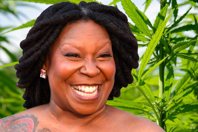 Whoopi Goldberg Launches Cannabusiness To Cure Cramps Credit: Getty