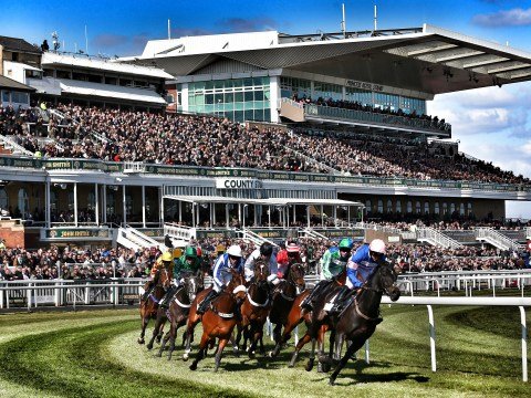 The ultimate 2016 Grand National expert guide to betting – runners, odds and tips