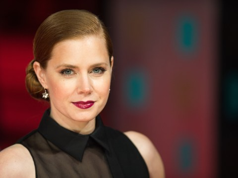 Gone Girl writer Gillian Flynn's Sharp Objects set for TV series starring Amy Adams