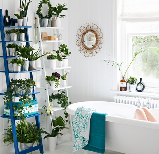 11 things to buy for your home if you love plants but don't have a garden