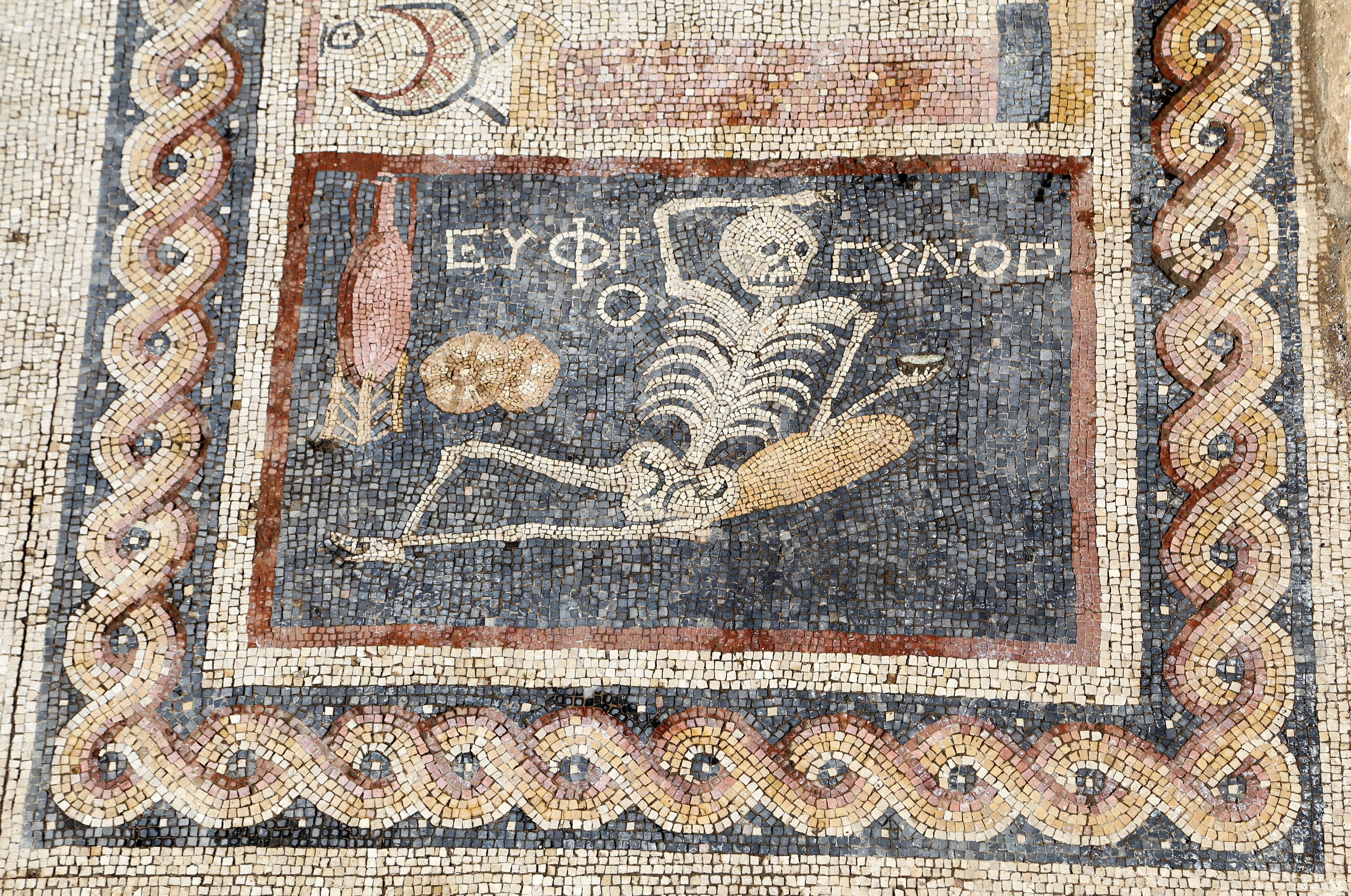 Ancient mosaic found in Turkey shows skeleton drinking wine and reads 'be cheerful, enjoy your life'