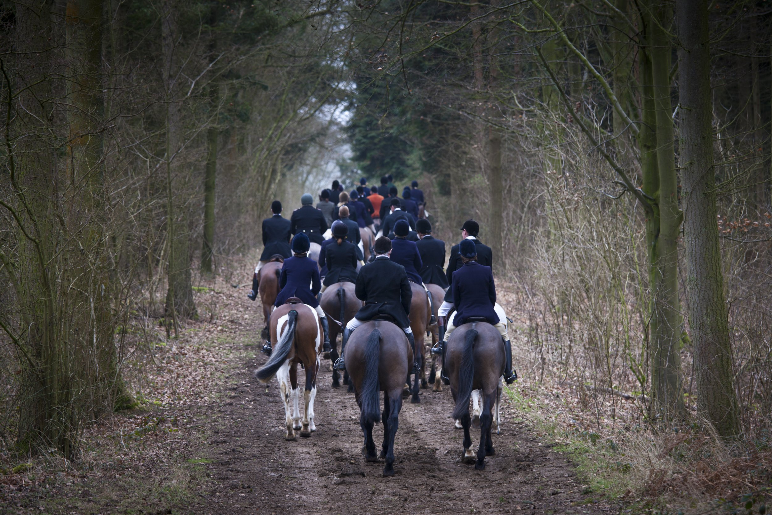 The Heythrop Hunt in The Cotswolds, UK