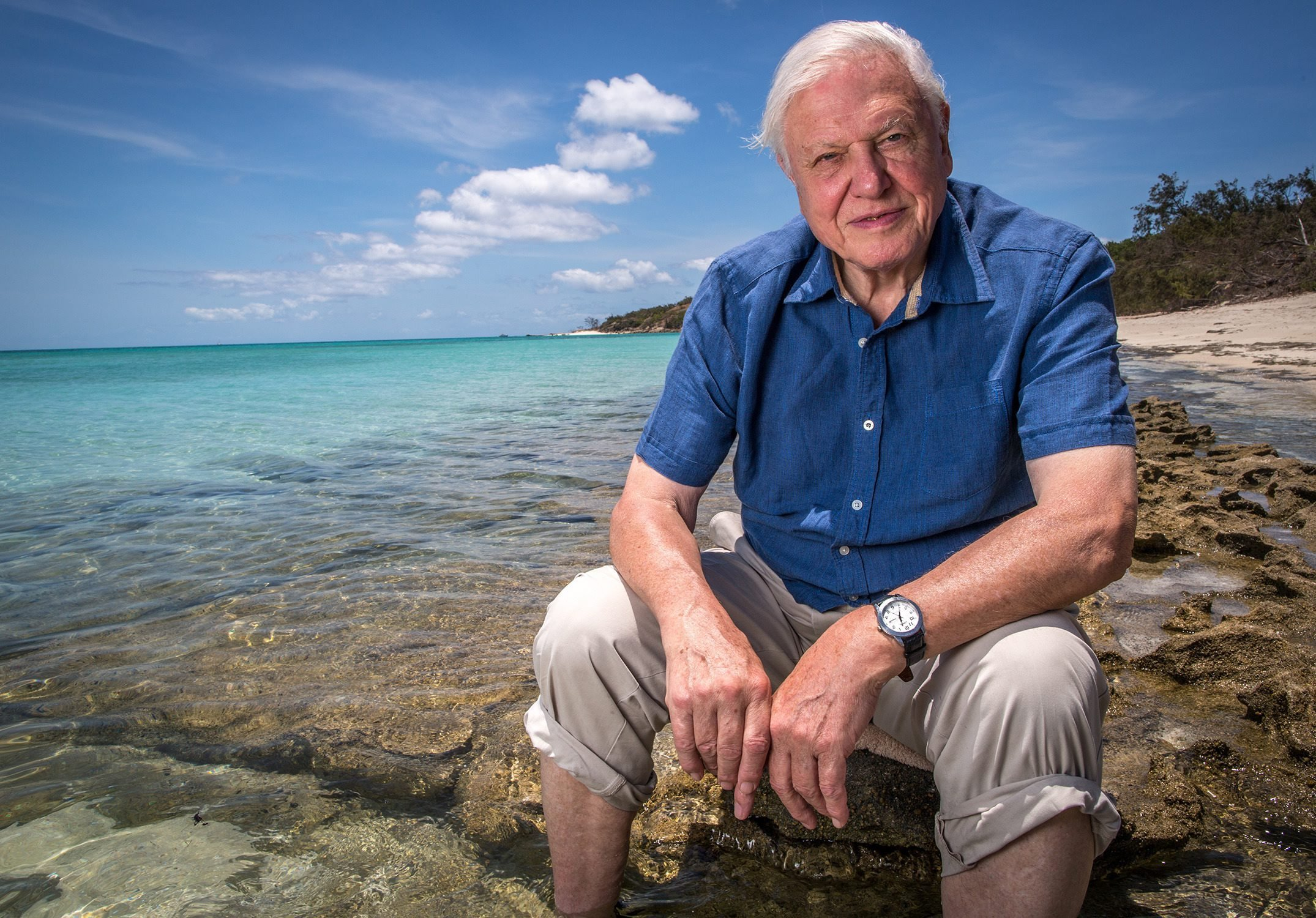 Sir David Attenborough at 90: A timeline of his outstanding career in television