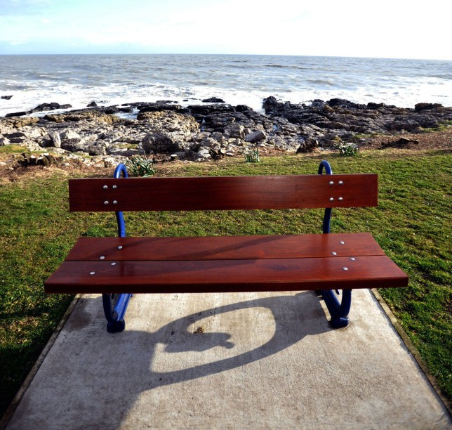 The curious case of the backwards bench.nA bench fitted ÒbackwardsÓ facing away from the sea on Porthcawl Esplanade is causingna bit of consternation in the town.The bench was fitted by Bridgend County Borough Council and faces the road andnSeabank Hotel, a slight less picturesque view than the sea and coastline behind it.n