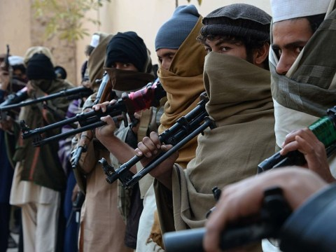 Suicide bomber detonates too early, accidentally kills 7 fellow Taliban extremists