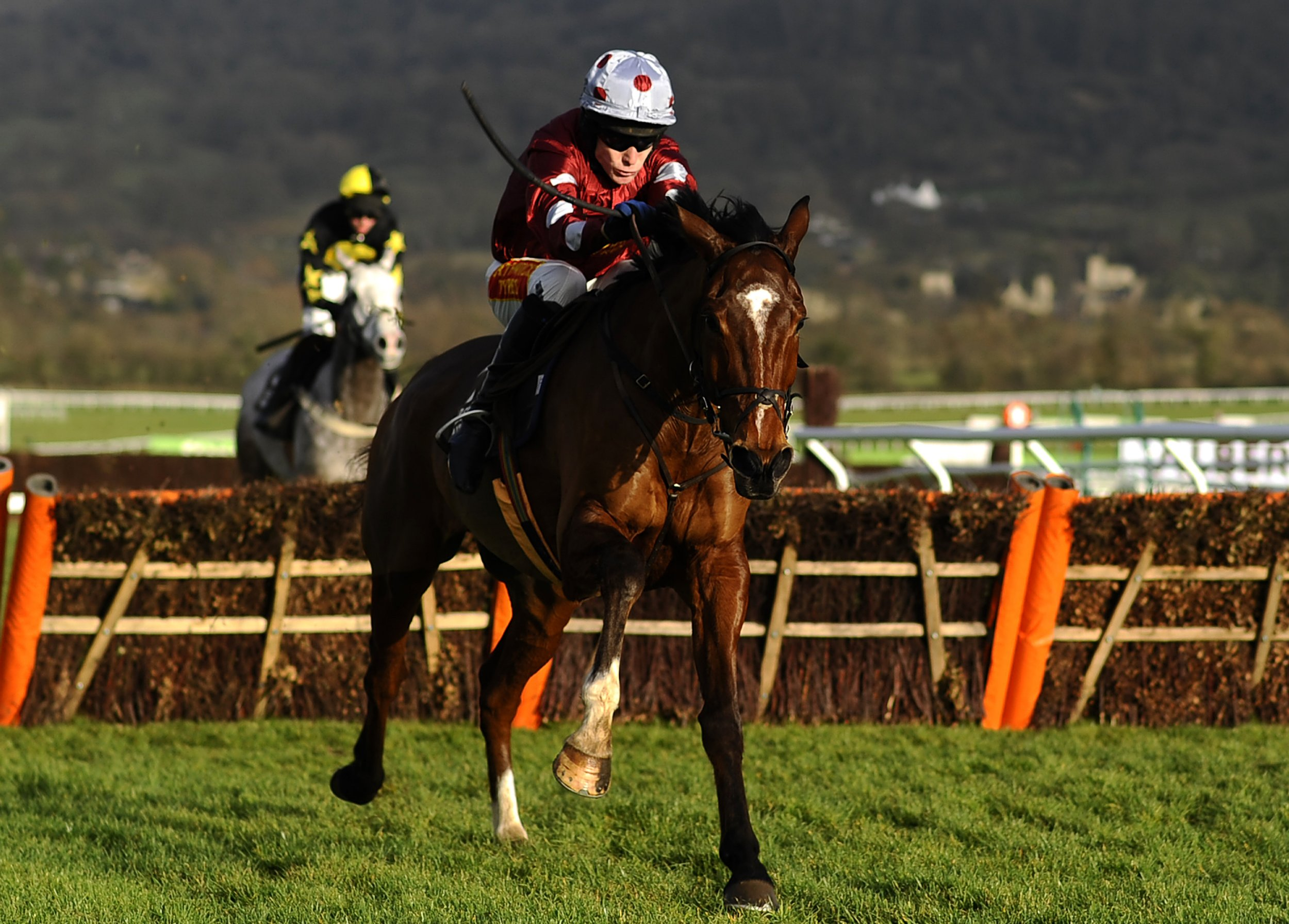 Two more Aintree horses dead 'from race injuries' pushing total death toll to six