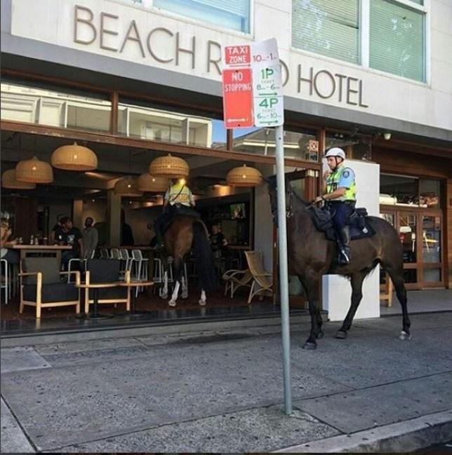 A police horse walks into a bar jonnoseidler/instagram
