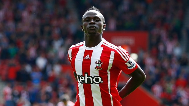 Image result for mane southampton