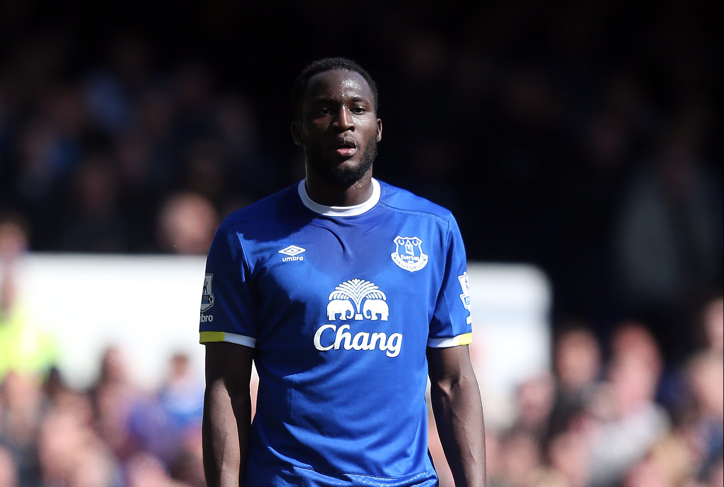 LIVERPOOL, ENGLAND - MAY 15: Romelu Lukaku of Everton in action during the Barclays Premier League match between Everton and Norwich City at Goodison Park on May 15, 2016 in Liverpool, England. (Photo by Chris Brunskill/Getty Images)