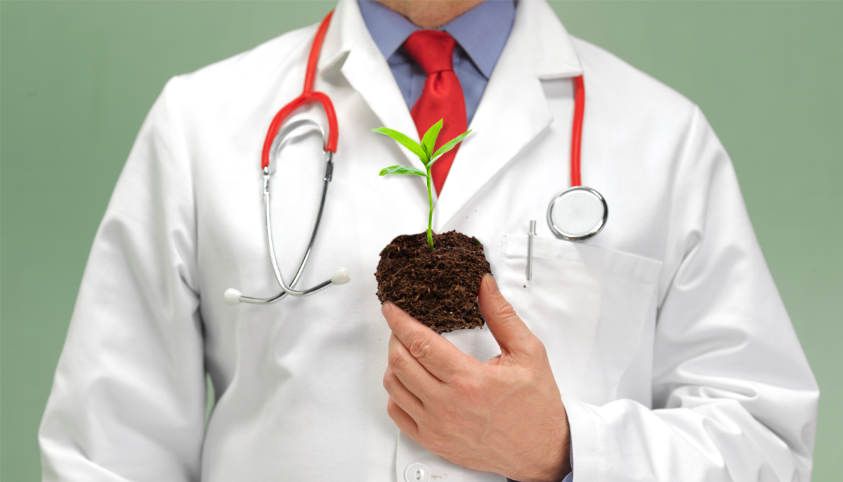 Gardening should be prescribed on the NHS, report says Credit: Getty Images/Metro
