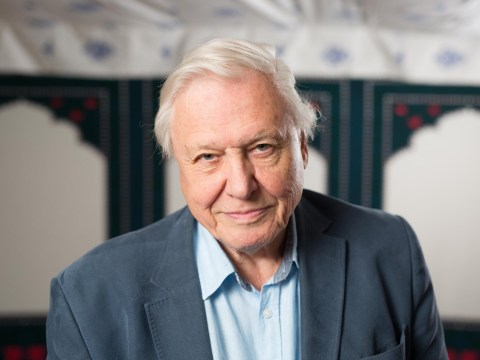 BBC's Sir David Attenborough plans to launch new app to bring his work to a younger audience