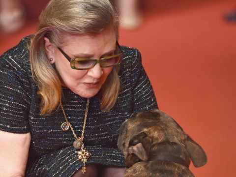 Carrie Fisher's dog manages to get camera-shy Kristen Stewart into a selfie