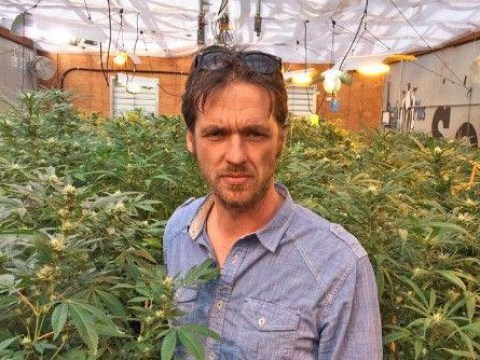 Guy growing cannabis illegally is now a multi-millionaire and paying his taxes