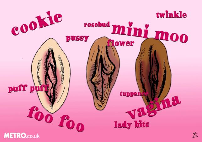 vagina Illustrations