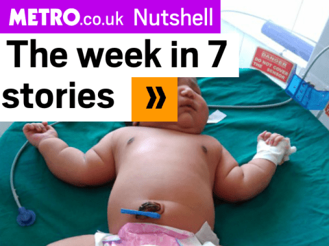 News in a Nutshell: 7 stories you must read this week