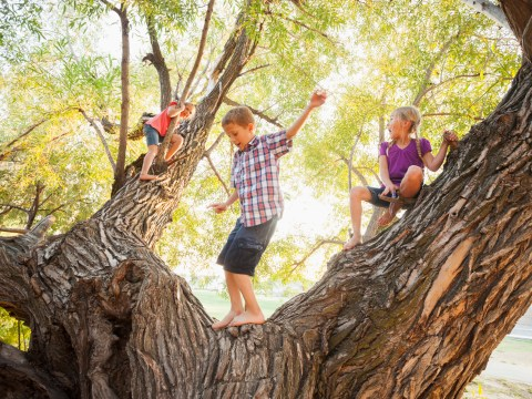 20 free ways to enjoy nature with children