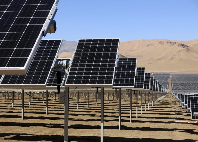 Solar panels of local mining company CAP, which were installed by SunEdison, are seen in the Atacama Desert in this June 5, 2014 file photo. REUTERS/Fabian Andres Cambero/Files - RTSCOGQ