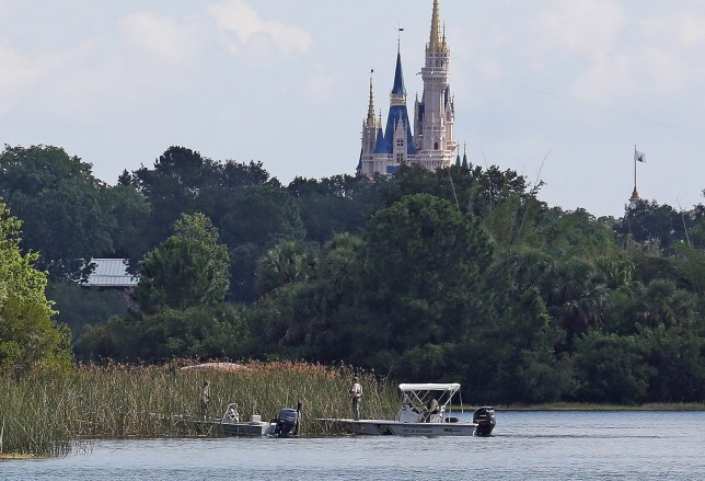 In the shadow of the Magic Kingdom Florida Fish and Wildlife Conservation Officers search for the body of a young boy Wednesday, June 15, 2016 after the boy was snatched off the shore and dragged underwater by an alligator Tuesday night at Grand Floridian Resort at Disney World in Lake Buena Vista, Fla. (Red Huber/Orlando Sentinel via AP)