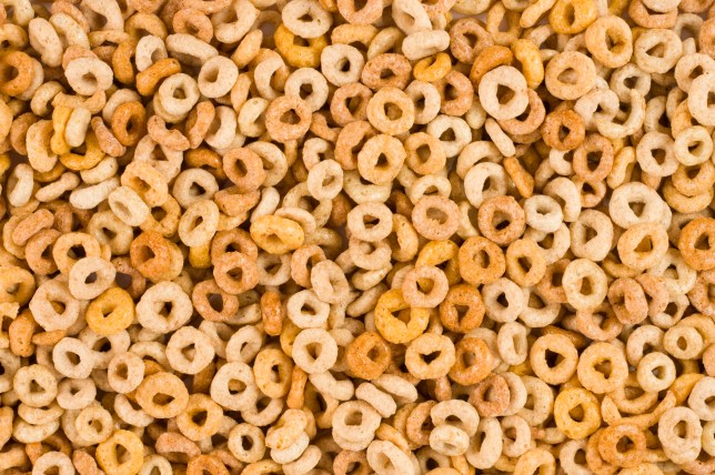 Close-up Cheerios breakfast cereal texture.