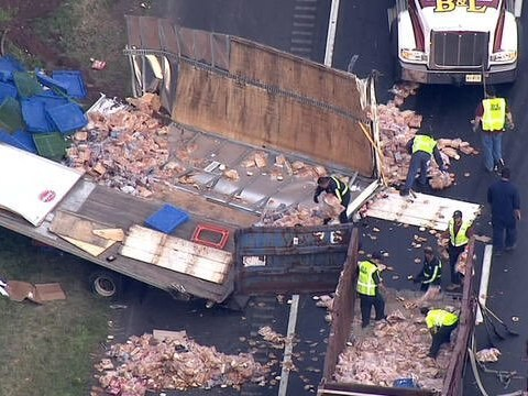 Bread truck and meat truck collide create 103,248 accidental sandwiches