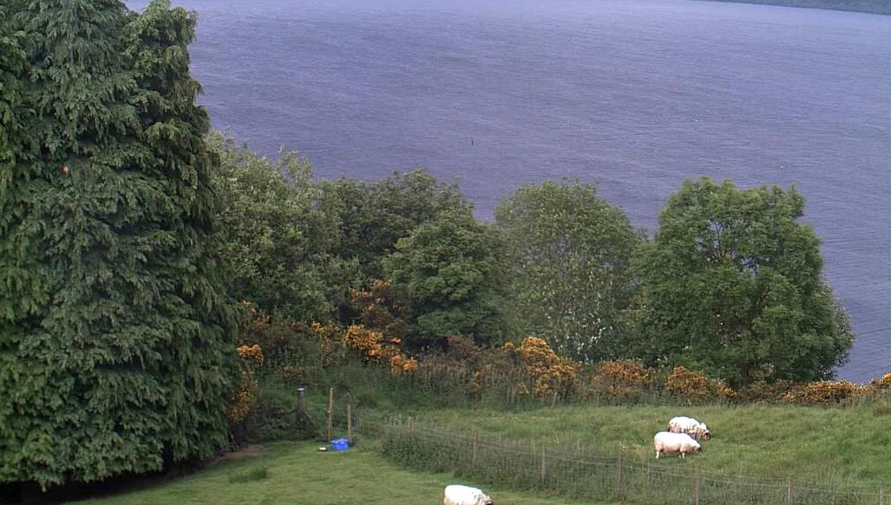 IMAGE OF LOCH NESS MONSTER WHICH WAS CAUGHT ON A WEB CAM BY JIM WINISKI...COLLECT PIC PETER JOLLY NORTHPIX