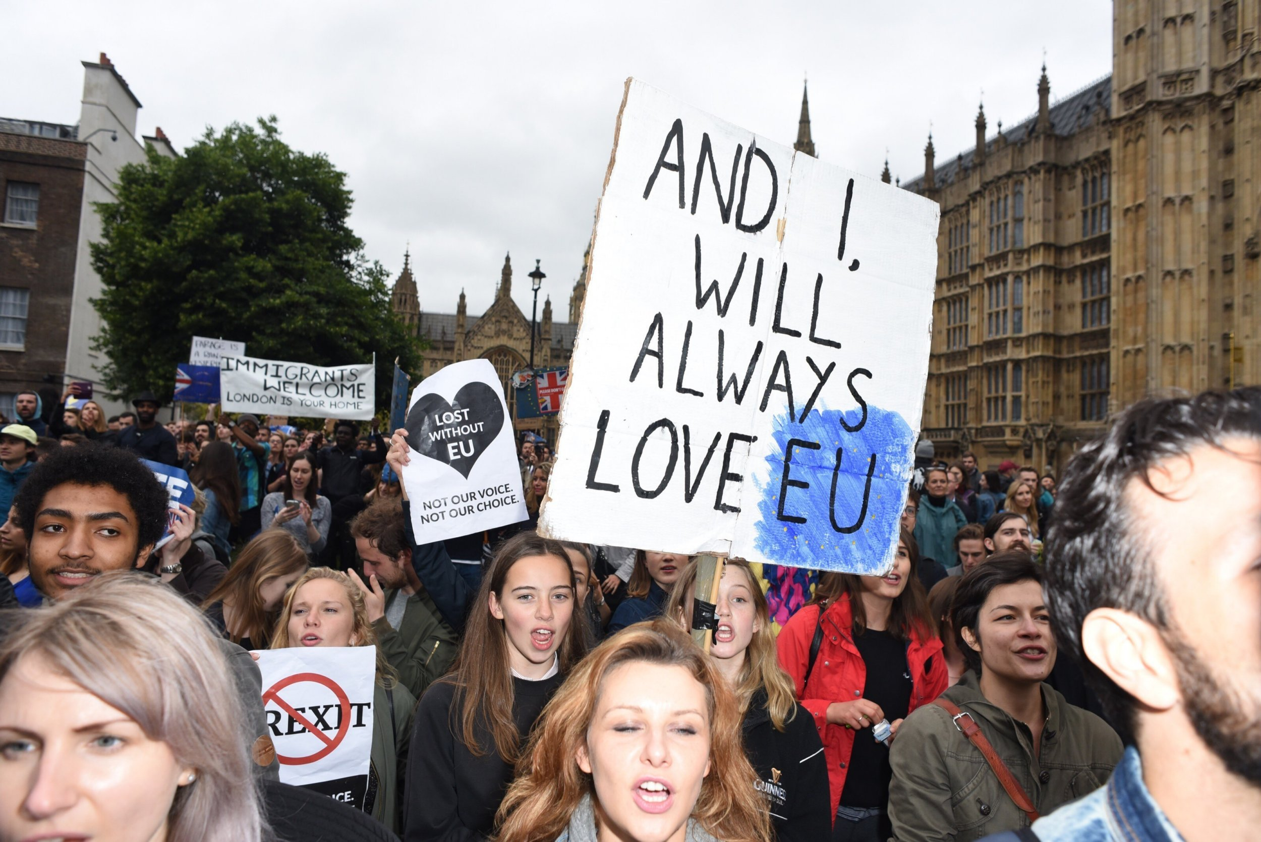 Picture Shows: GV, General View June 28, 2016 A general view of the Brexit Protest in London, England. Non-Exclusive WORLDWIDE RIGHTS Pictures by : FameFlynet UK © 2016 Tel : +44 (0)20 3551 5049 Email : info@fameflynet.uk.com