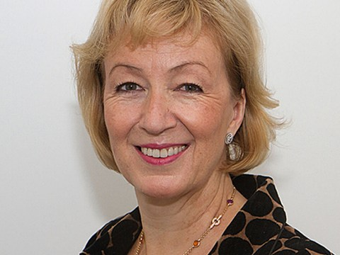 Andrea Leadsom emerges as pro-Brexit favourite for Tory leadership as Gove loses support