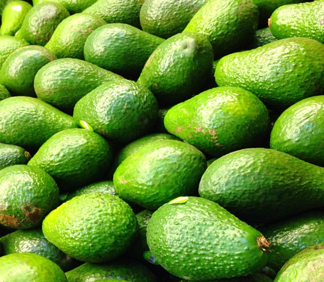 Avocado shortage fuels New Zealand crime wave